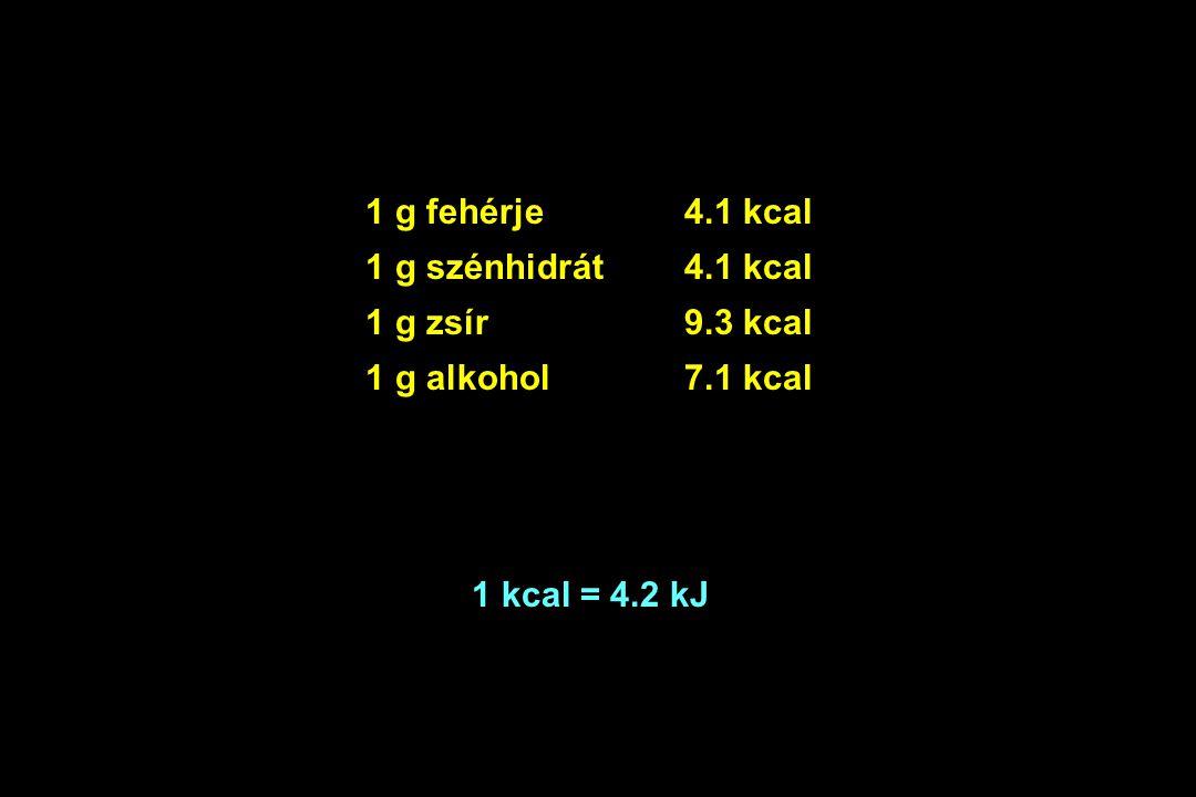 1 g fehérje 4.1 kcal 1 g szénhidrát 4.1 kcal. 1 g zsír 9.3 kcal.