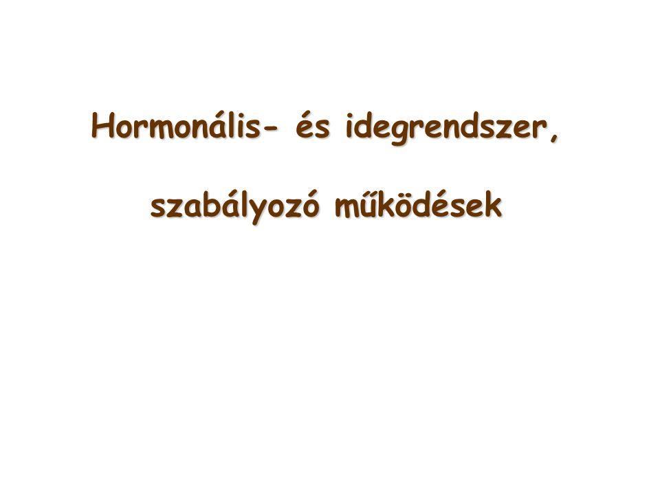 Hormonális- és idegrendszer,