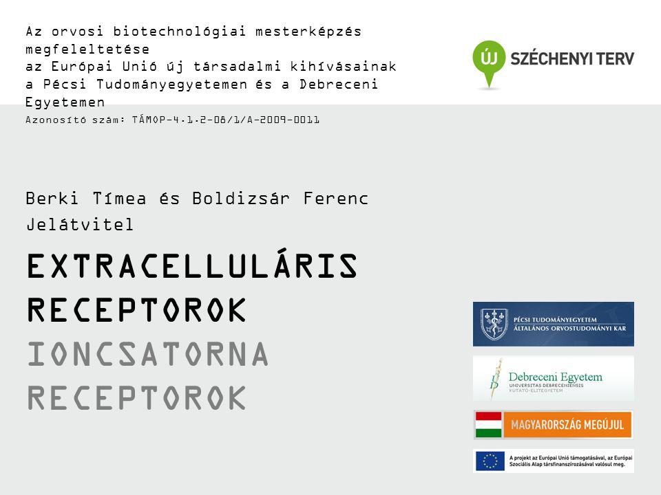 Extracelluláris receptorok Ioncsatorna receptorok