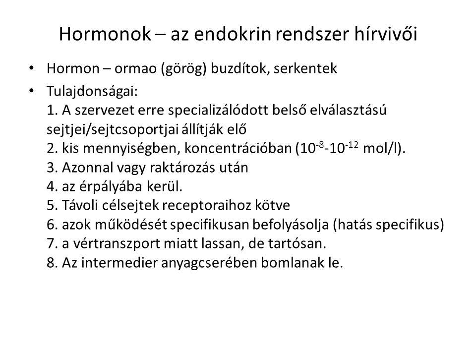 Hormonok – az endokrin rendszer hírvivői