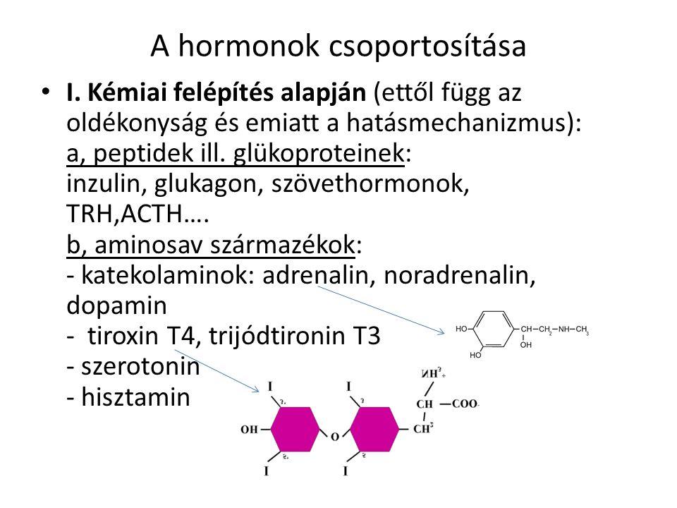 A hormonok csoportosítása