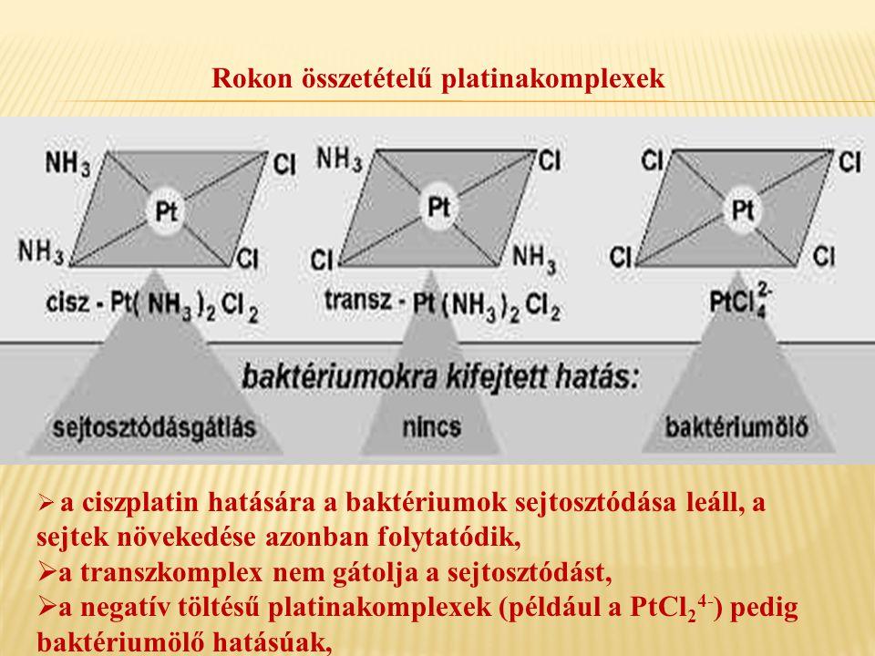 Rokon összetételű platinakomplexek
