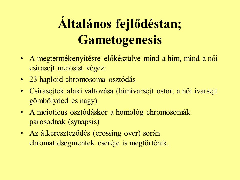 Általános fejlődéstan; Gametogenesis