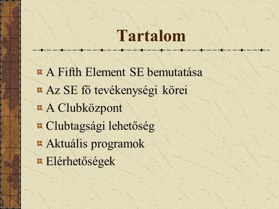 Tartalom A Fifth Element SE bemutatása Az SE fő tevékenységi körei