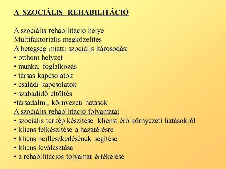 A SZOCIÁLIS REHABILITÁCIÓ