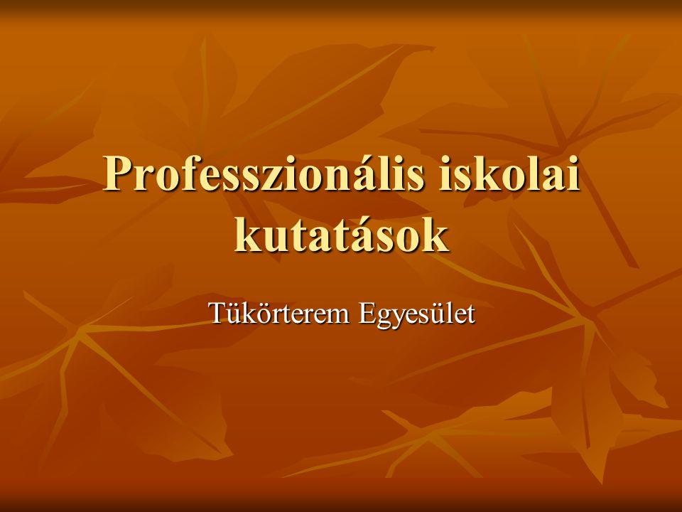 Professzionális iskolai kutatások