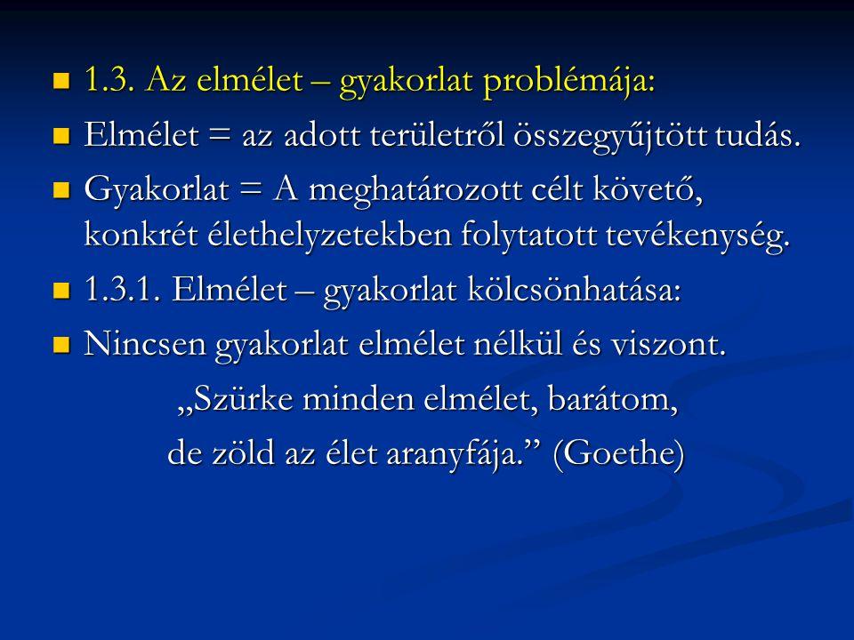 1.3. Az elmélet – gyakorlat problémája: