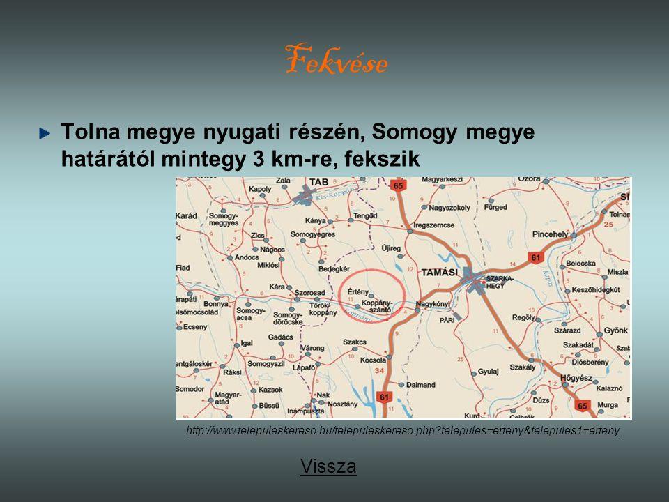 Fekvése Tolna megye nyugati részén, Somogy megye határától mintegy 3 km-re, fekszik.