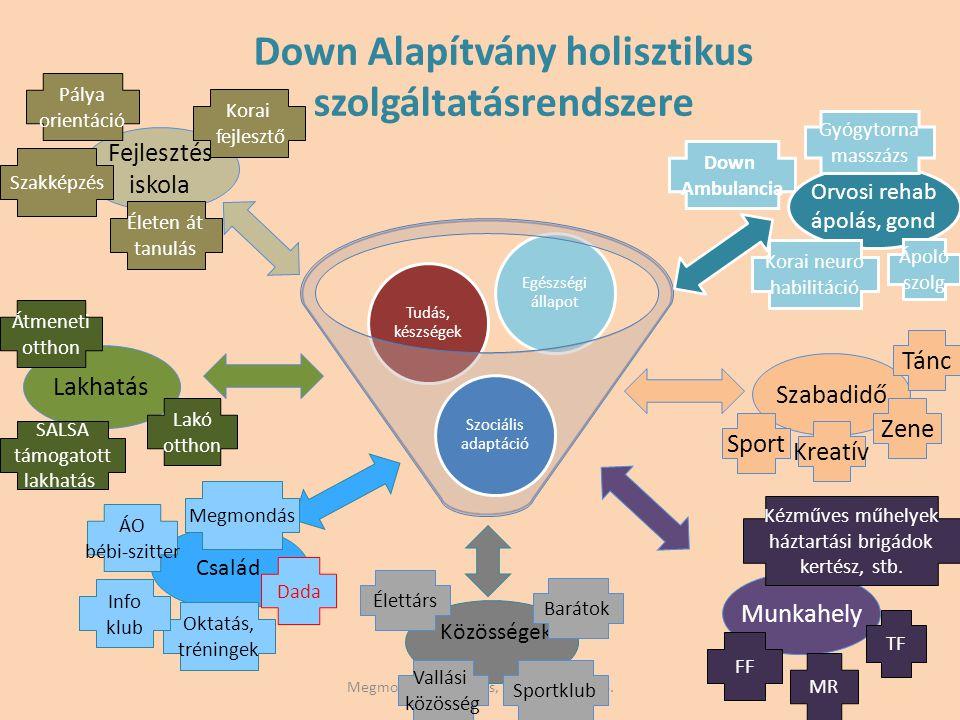 Down Alapítvány holisztikus szolgáltatásrendszere
