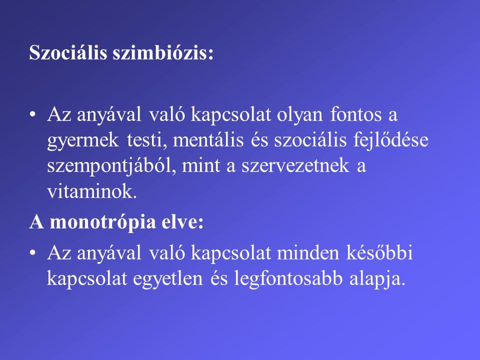 Szociális szimbiózis: