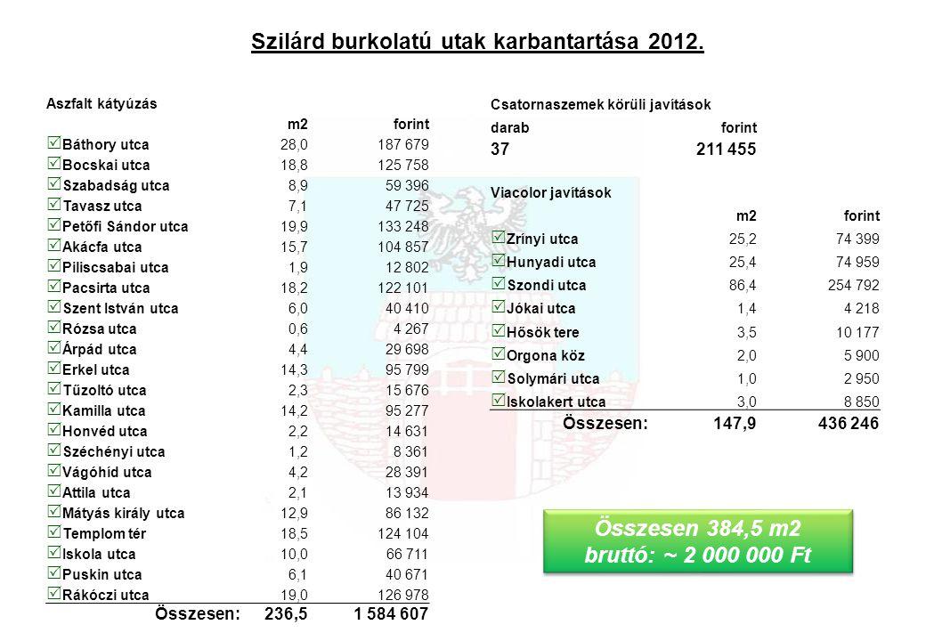 Szilárd burkolatú utak karbantartása 2012.