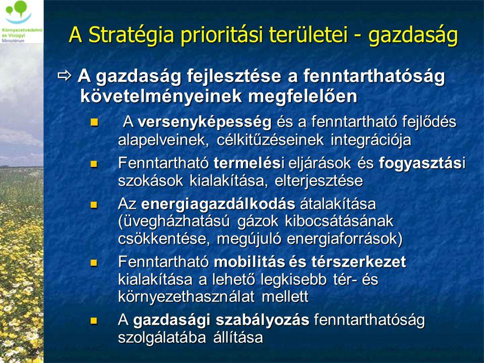 A Stratégia prioritási területei - gazdaság