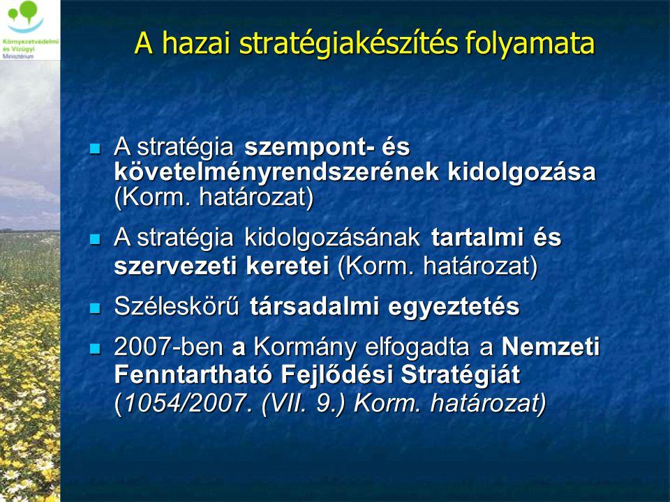 A hazai stratégiakészítés folyamata