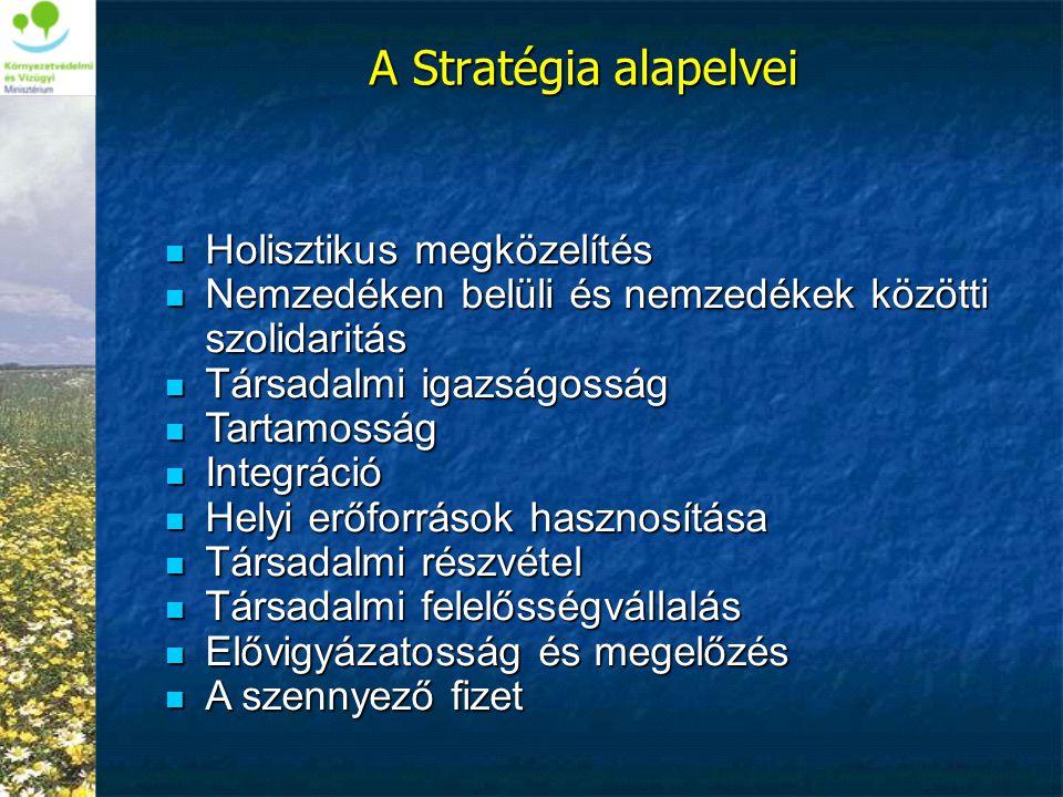 A Stratégia alapelvei Holisztikus megközelítés