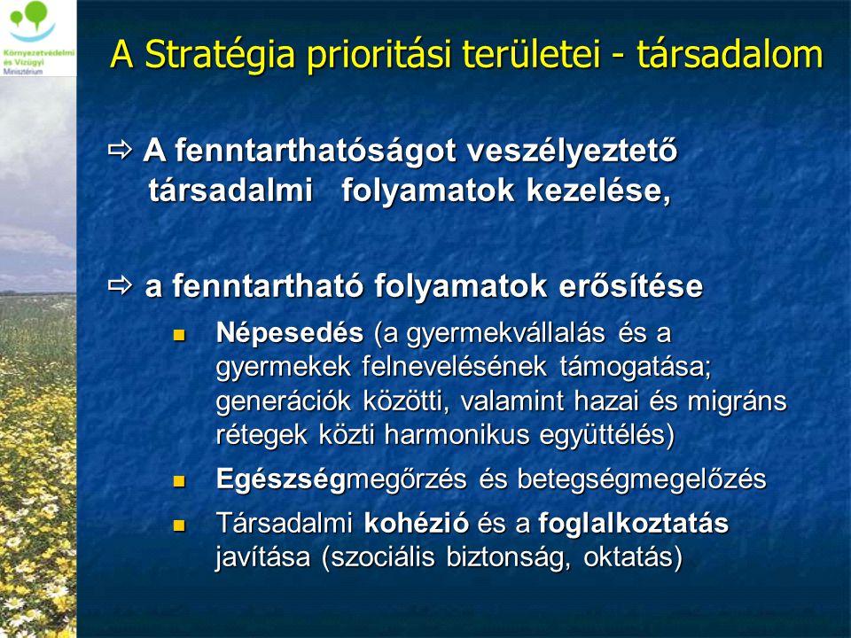 A Stratégia prioritási területei - társadalom