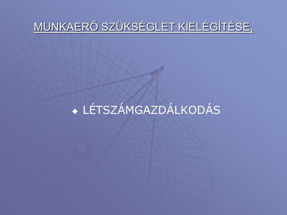 MUNKAERŐ SZÜKSÉGLET KIELÉGÍTÉSE,
