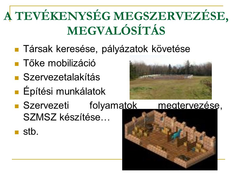 A TEVÉKENYSÉG MEGSZERVEZÉSE, MEGVALÓSÍTÁS