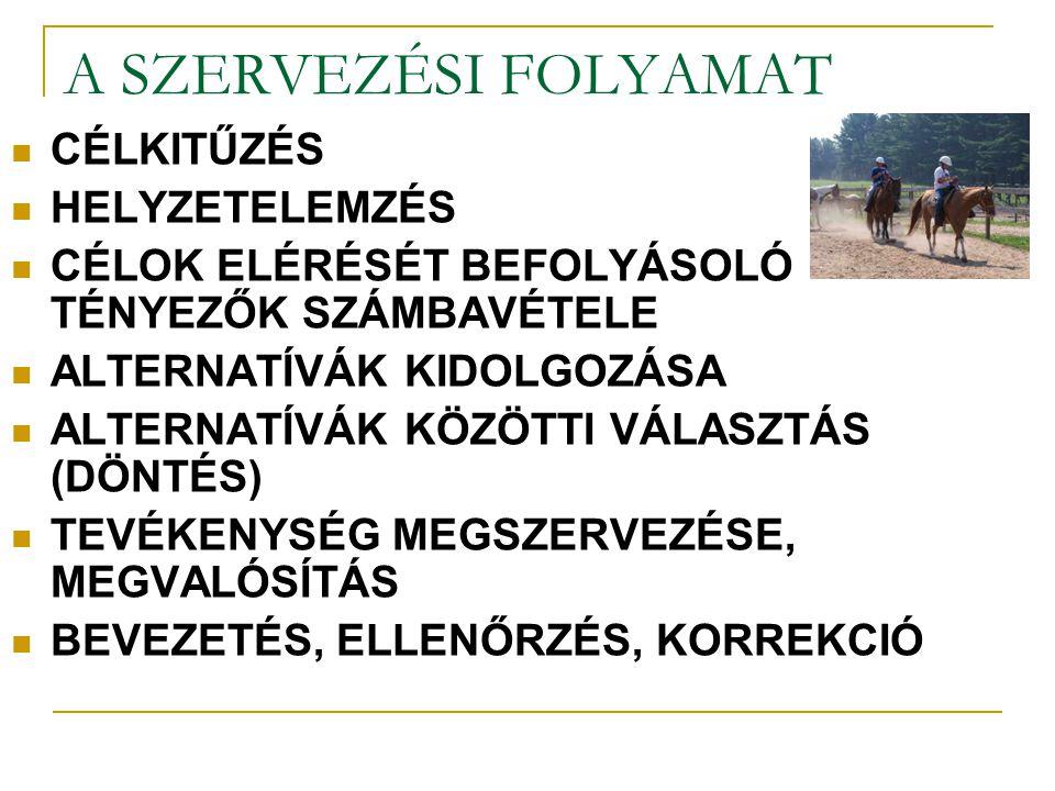 A SZERVEZÉSI FOLYAMAT CÉLKITŰZÉS HELYZETELEMZÉS