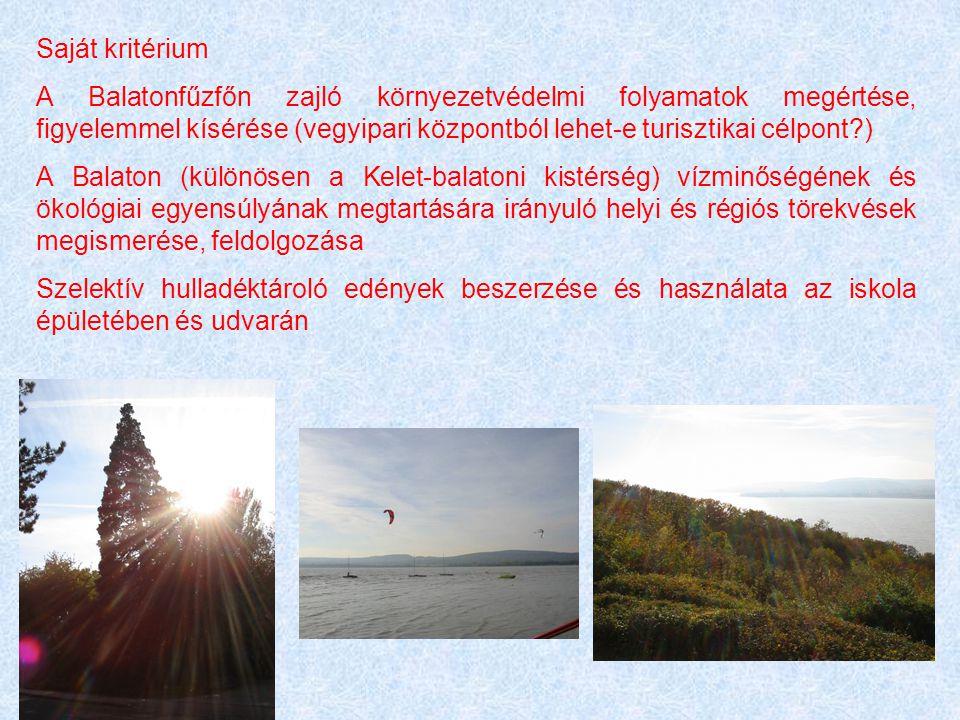 Saját kritérium A Balatonfűzfőn zajló környezetvédelmi folyamatok megértése, figyelemmel kísérése (vegyipari központból lehet-e turisztikai célpont )