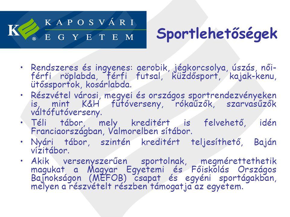 Sportlehetőségek