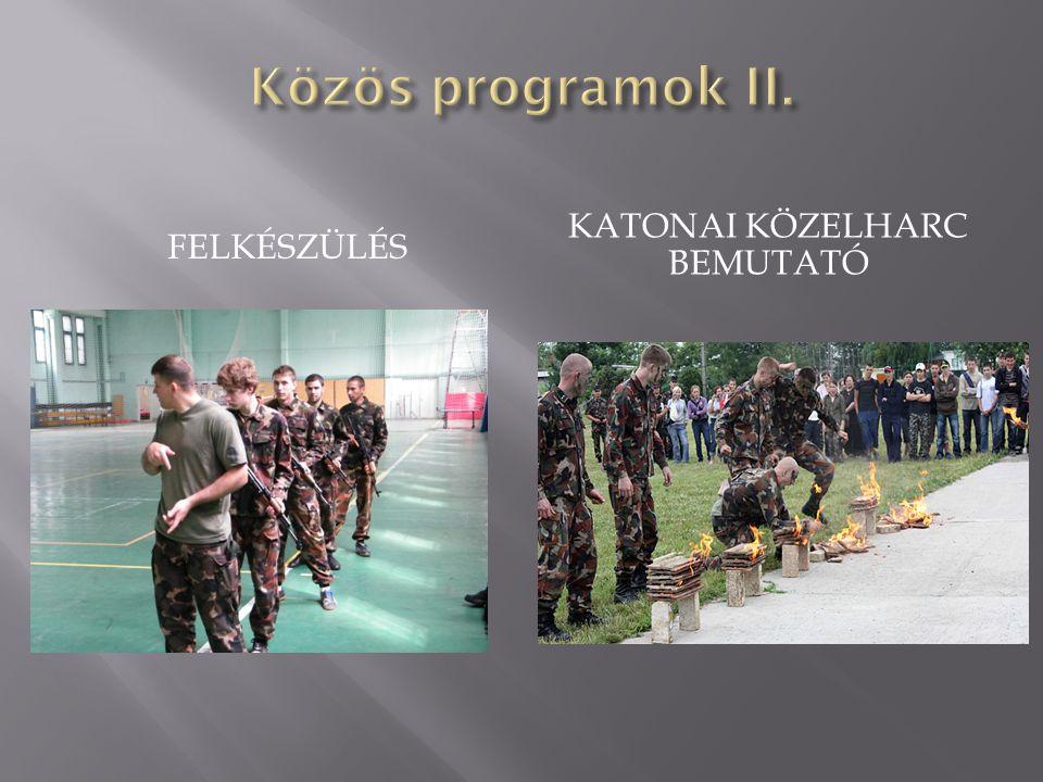 Katonai közelharc bemutató
