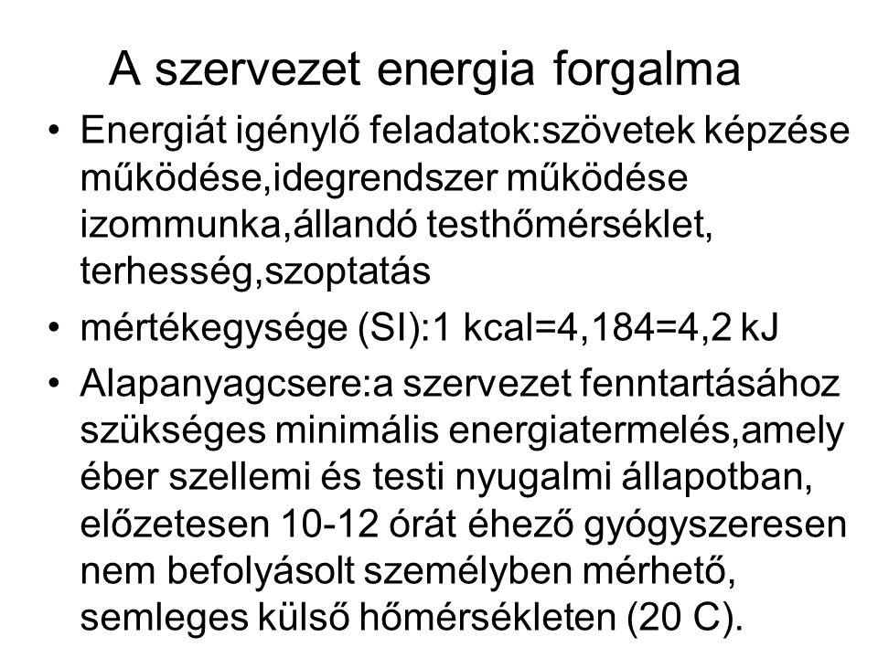 A szervezet energia forgalma