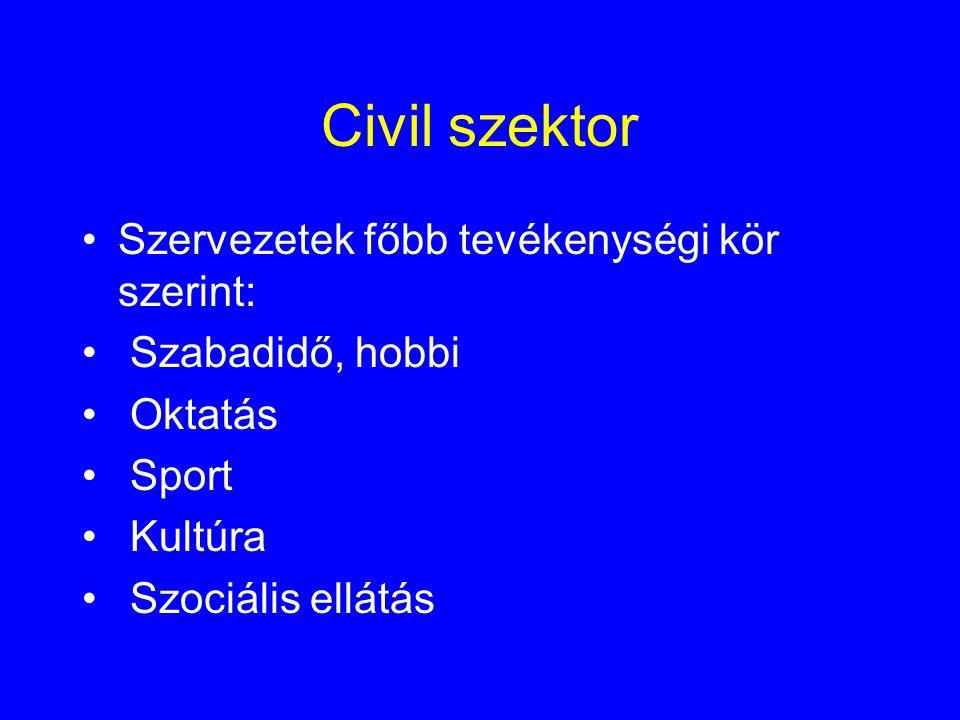 Civil szektor Szervezetek főbb tevékenységi kör szerint: