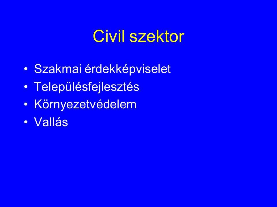 Civil szektor Szakmai érdekképviselet Településfejlesztés