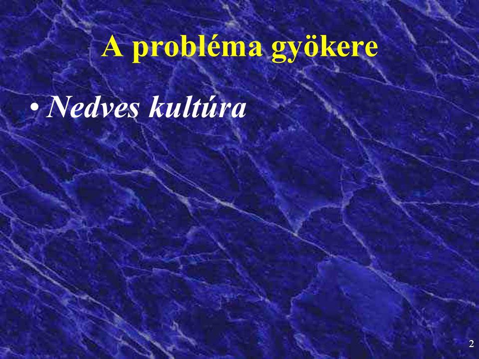 19:00:28 A probléma gyökere Nedves kultúra