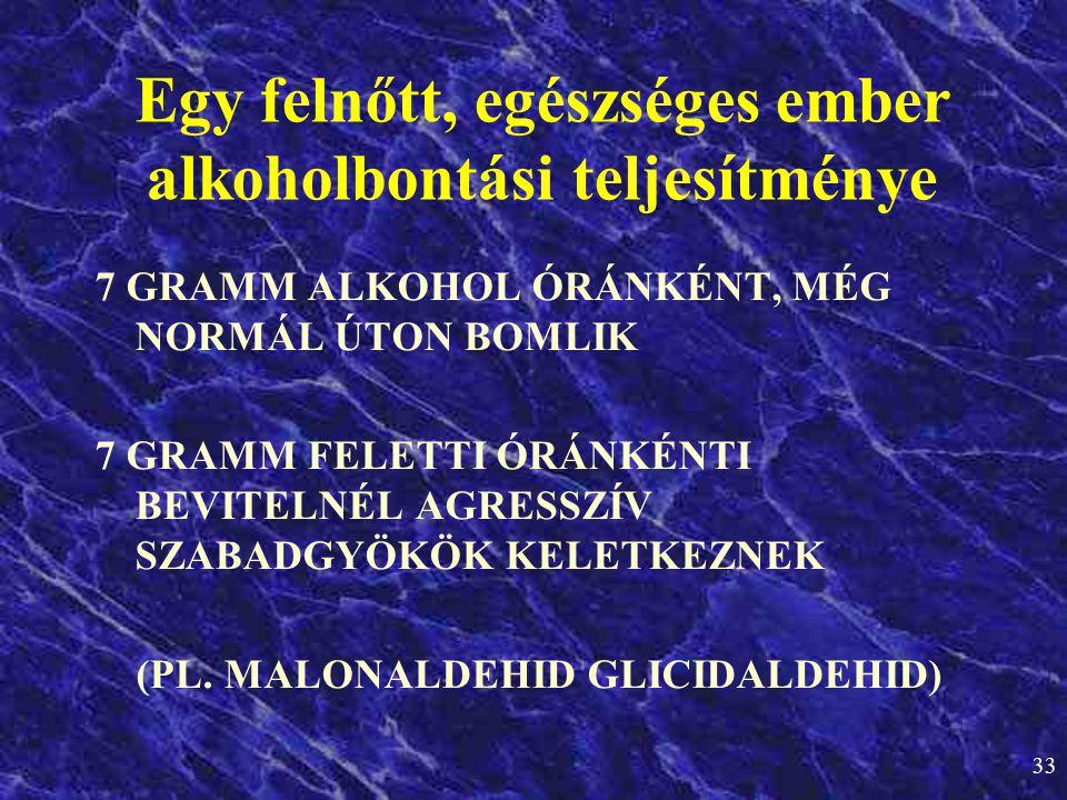 Egy felnőtt, egészséges ember alkoholbontási teljesítménye