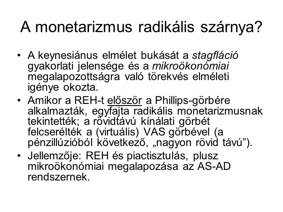 A monetarizmus radikális szárnya