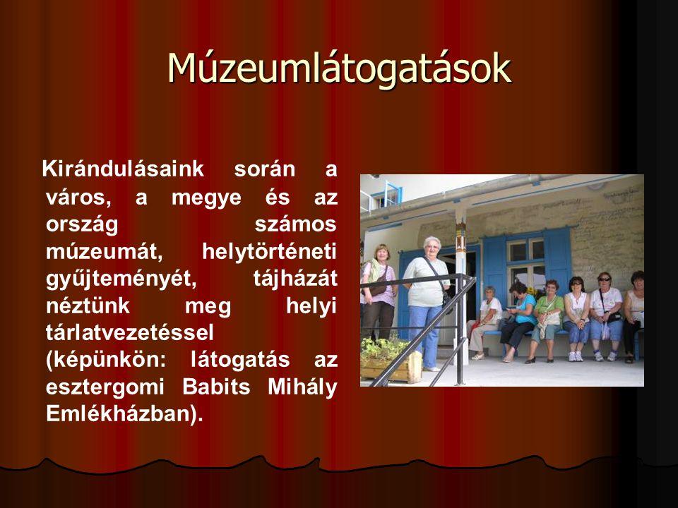 Múzeumlátogatások