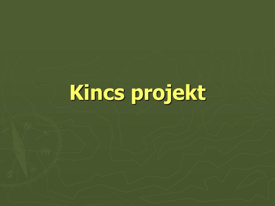 Kincs projekt