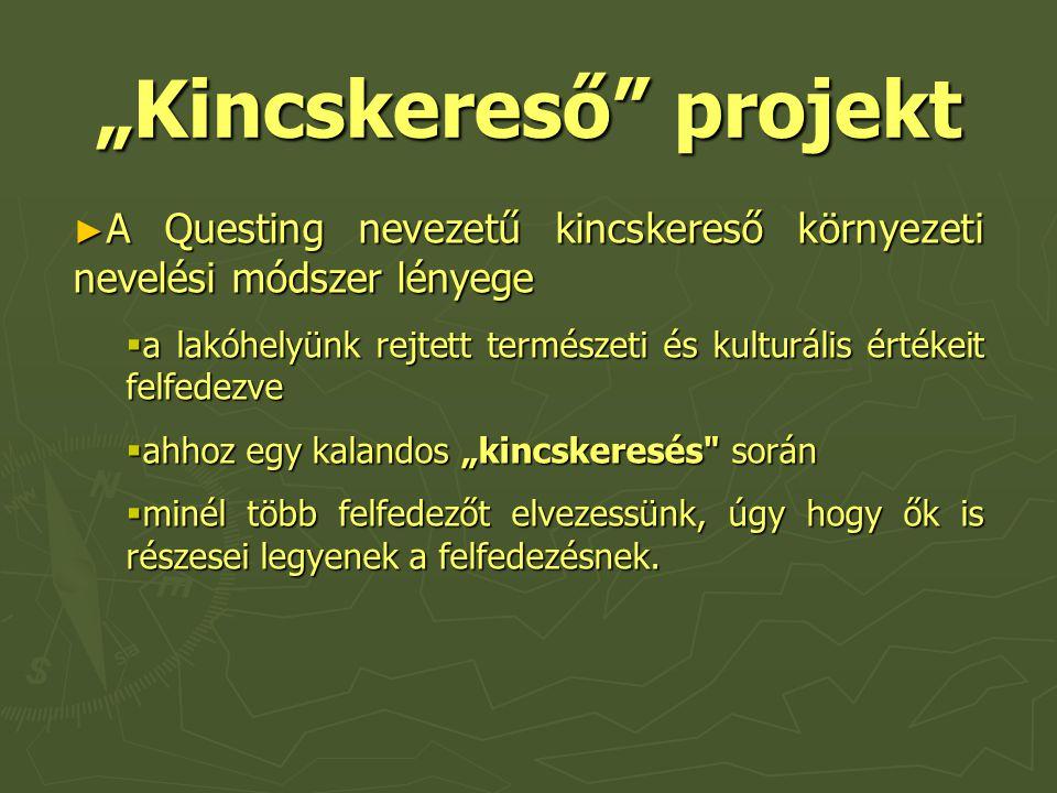 """""""Kincskereső projekt"""