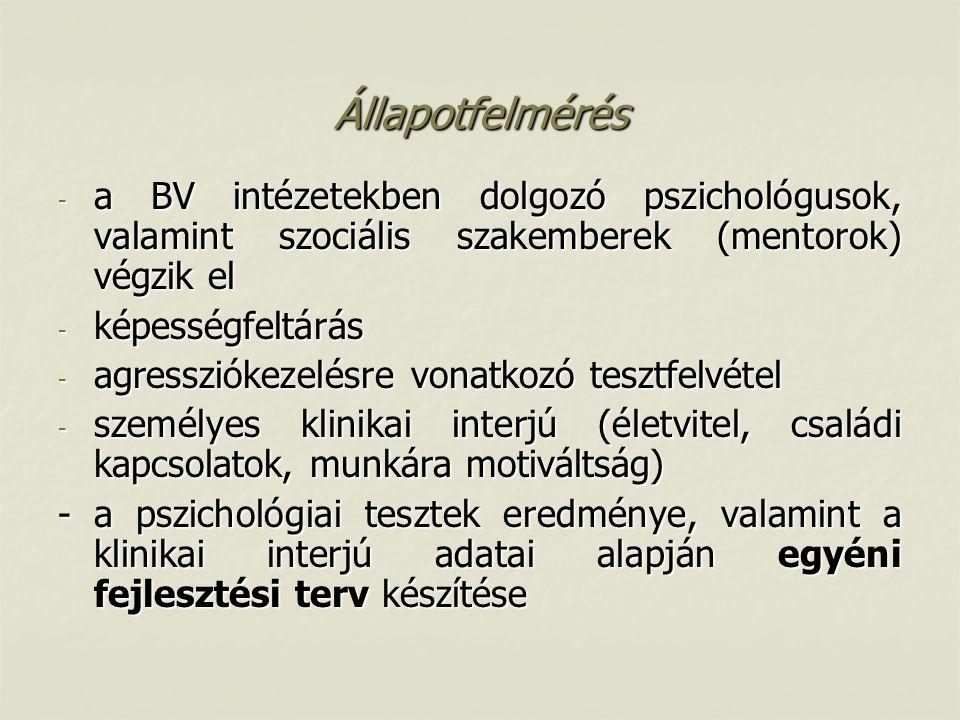 Állapotfelmérés a BV intézetekben dolgozó pszichológusok, valamint szociális szakemberek (mentorok) végzik el.
