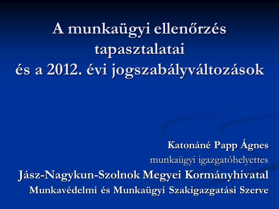 A munkaügyi ellenőrzés tapasztalatai és a 2012