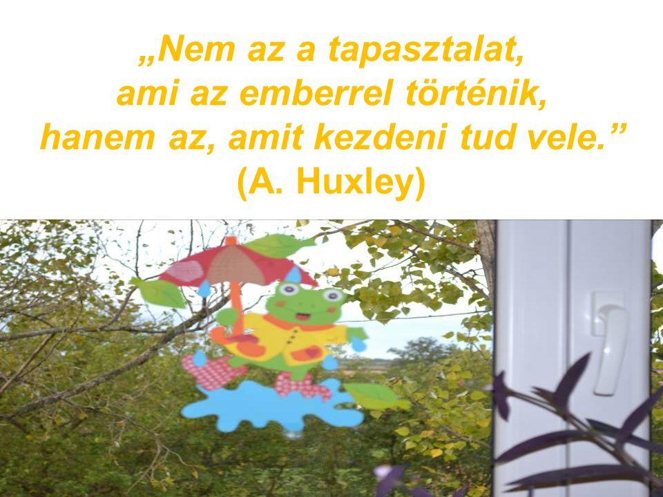 """""""Nem az a tapasztalat, ami az emberrel történik, hanem az, amit kezdeni tud vele. (A. Huxley)"""