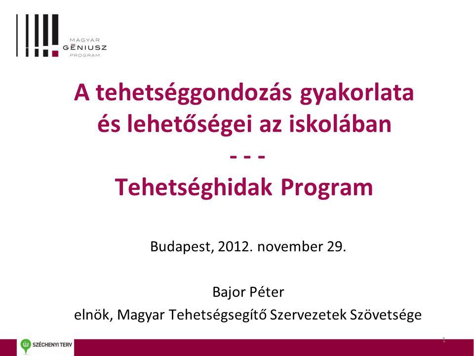 elnök, Magyar Tehetségsegítő Szervezetek Szövetsége