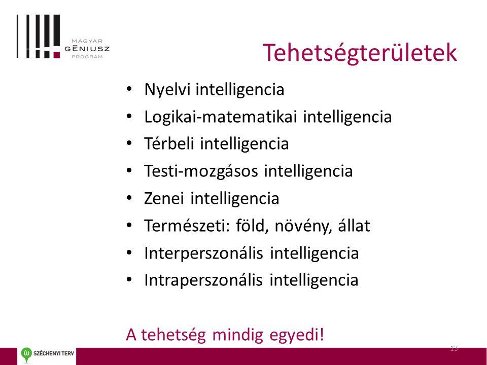 Tehetségterületek Nyelvi intelligencia
