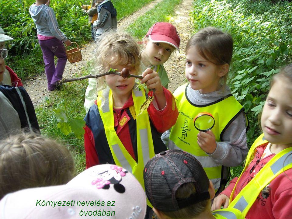 Környezeti nevelés az óvodában