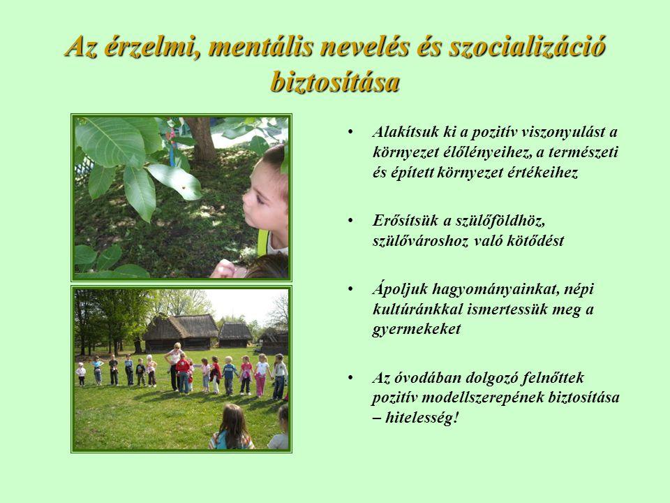 Az érzelmi, mentális nevelés és szocializáció biztosítása