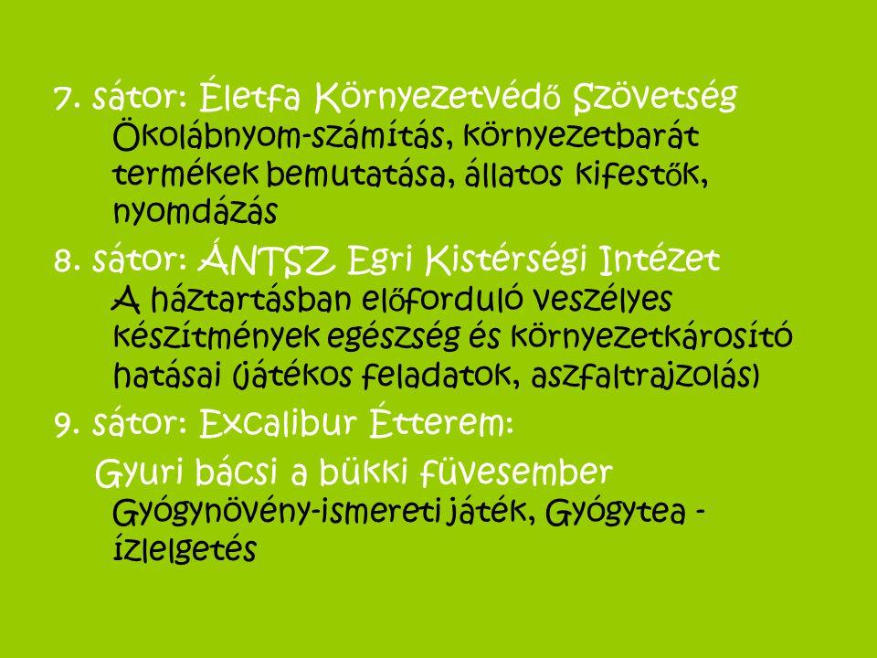 7. sátor: Életfa Környezetvédő Szövetség Ökolábnyom-számítás, környezetbarát termékek bemutatása, állatos kifestők, nyomdázás