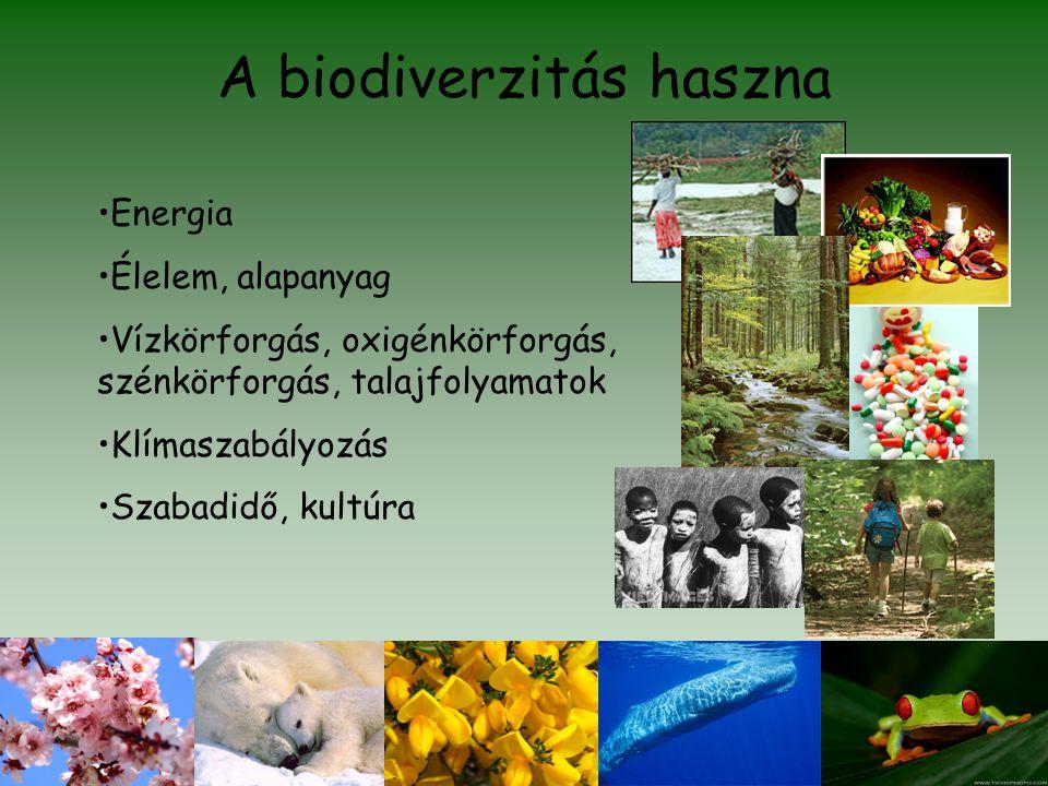 A biodiverzitás haszna