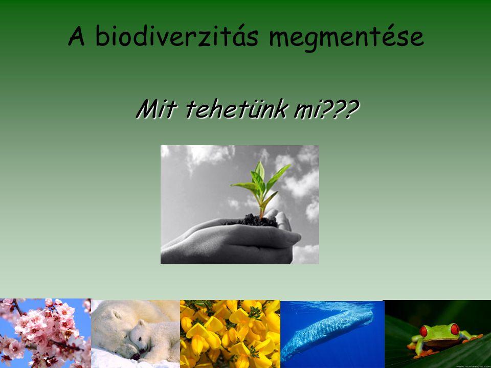 A biodiverzitás megmentése