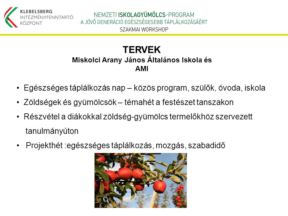 Miskolci Arany János Általános Iskola és AMI