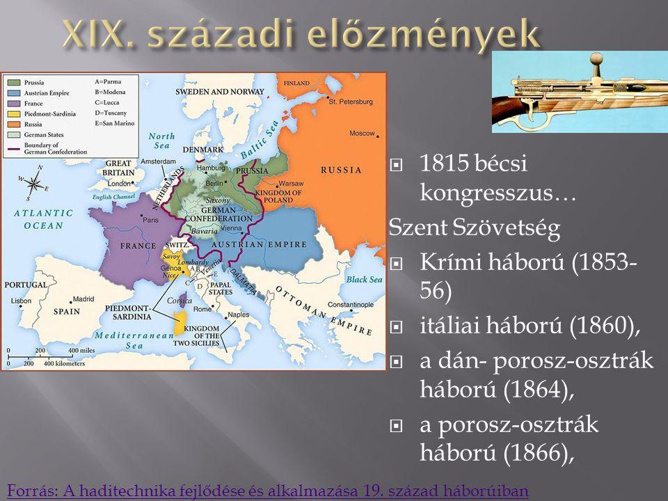 XIX. századi előzmények
