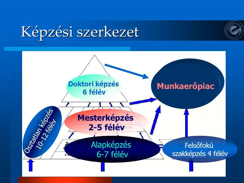 Képzési szerkezet Munkaerőpiac Mesterképzés 2-5 félév Alapképzés