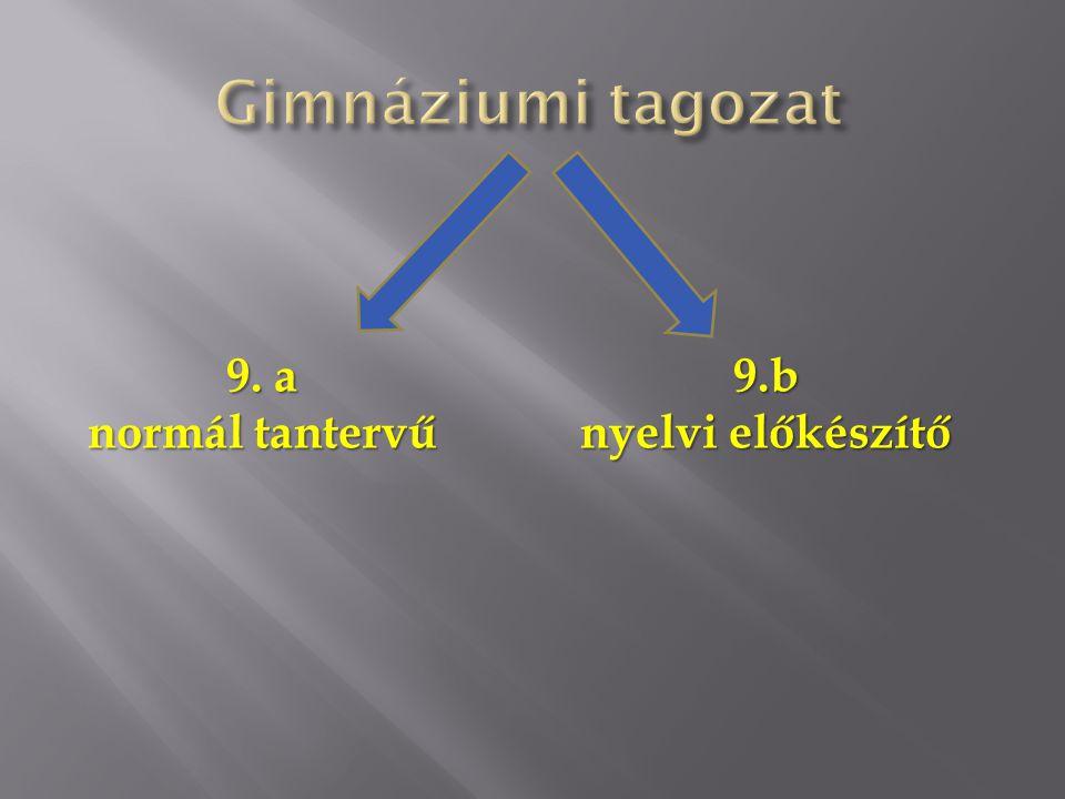 Gimnáziumi tagozat 9. a normál tantervű 9.b nyelvi előkészítő
