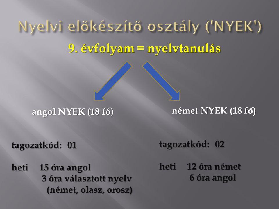 Nyelvi előkészítő osztály ( NYEK )