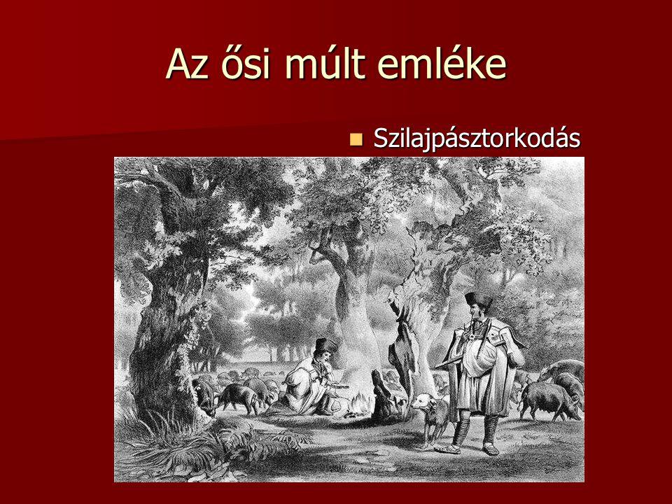 Az ősi múlt emléke Szilajpásztorkodás